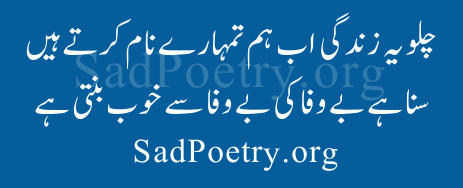 best urdu poetry - *..Polling for SOS competition December 2013..*