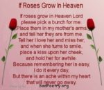 If Roses Grow In Heaven | Death Poems