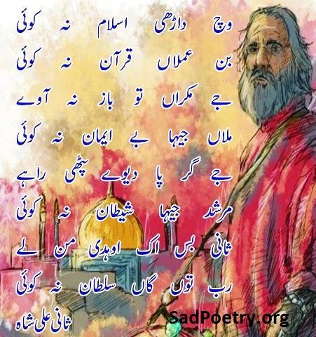 sani-ali-shah-punjabi-shayari-islamic
