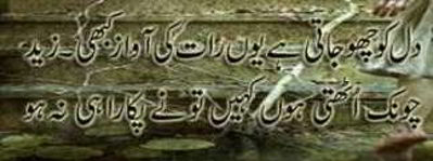 urdu.poetry.images.