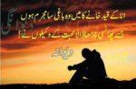 Mein Wo Baghi Sa Mujram Hon