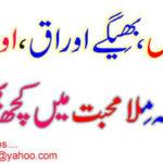 Mila Mohabbat Mein Kuch Bi Nahi