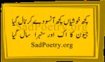 Ik Aur Sunehra Saal Gaya