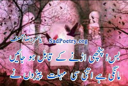 urdu-shayari