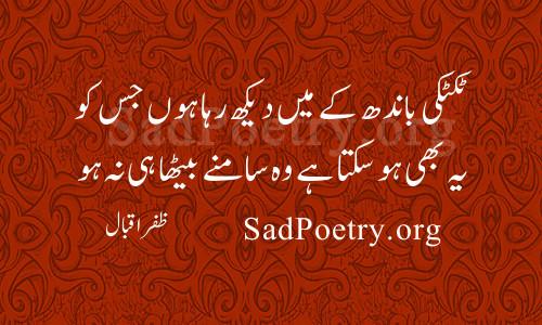 zafar-iqbal (18)