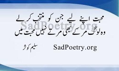 saleem kausar poetry