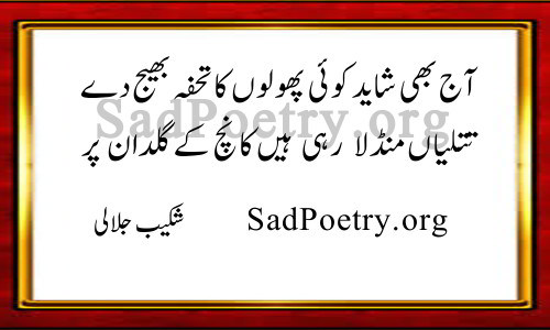 shakeb jalali poetry