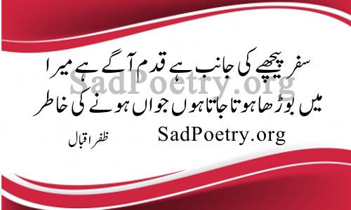 zafar-iqbal safar