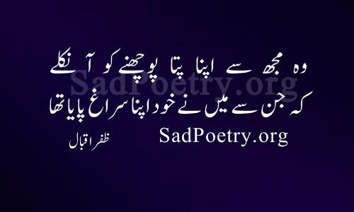 zafar-iqbal (11)