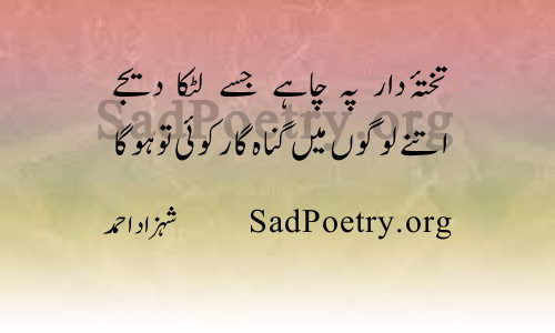 shahzad ahmad (6)