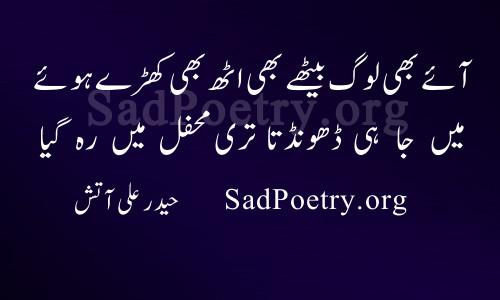 haider aatish