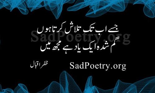 zafar-iqbal (13)