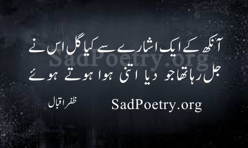 zafar-iqbal urdu poetry