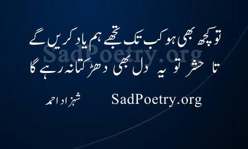 dil shahzad