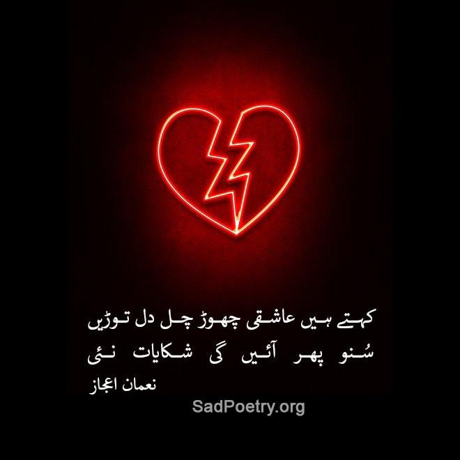 dil torain urdu